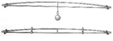 Rondelet 1802